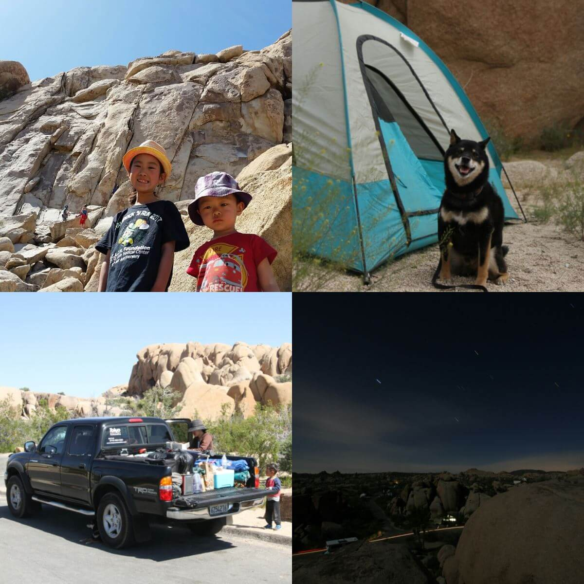 Joshua Tree Road Trip!